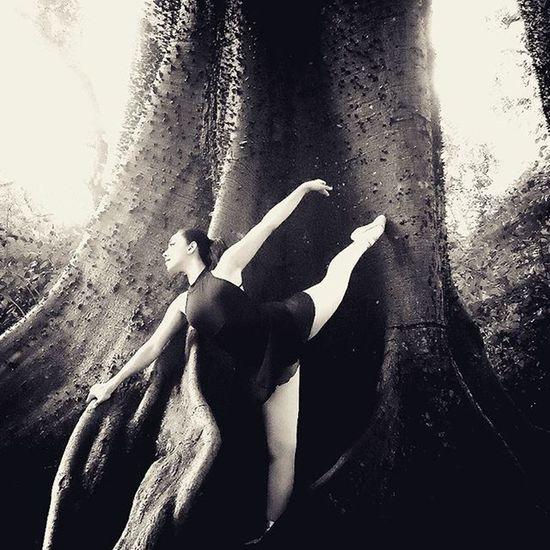 Foto Fotografia Balet Photography Parquearrudacamara Bailarina Bosque Bosques Encanto Blackandwhitephotography