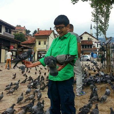 طيور الحمام في سراييفو المدينة القديمة الباشتشارشيا تضيف المرح والمتعة للصغار والكبار في البوسنة_والهرسك Pigeon make joy & fun for the young & adults in Sarajevo old City Bascarsija Bascarsija Bosnia_Herzegovina