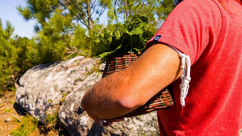 """""""Perfumero"""" Perfume Perfum Perfumelover Escenas Rurales Rural Scene Galicia Galicia, Spain Campo Rural Mobile Photography Lg G4 Photography LG G4"""