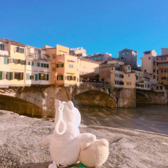 Firenzeview Firenze, Italy Firenze Teds Travel Mumin Momin Friends Friendship