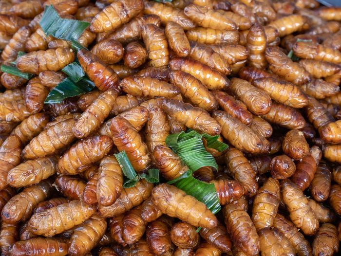Full frame shot of silkworms for sale in market