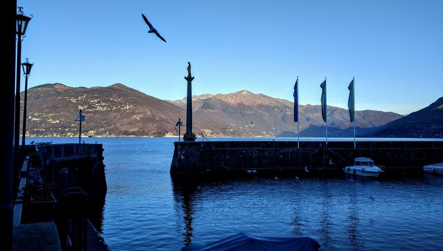 Italy Landscape Bird Water Flying Mountain Clear Sky Blue Lake