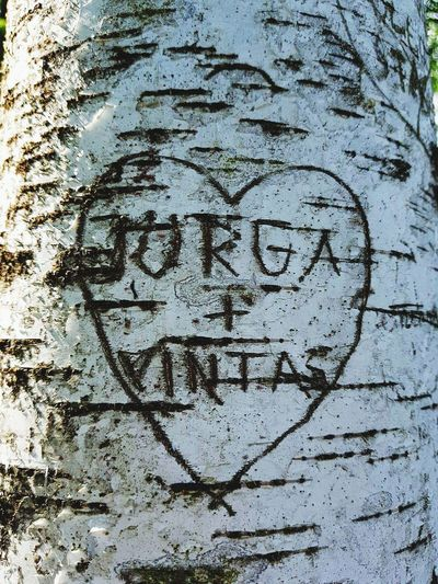 Love Note Tree Love Couple Names Backgrounds Full Frame Textured  Communication Text Graffiti Close-up Written