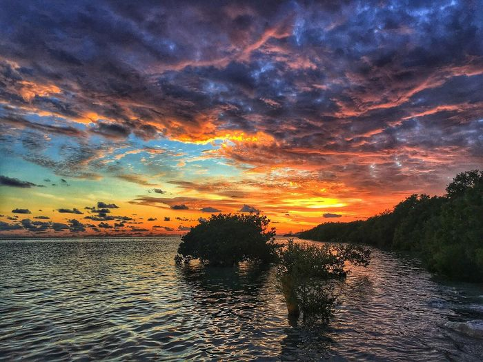 Ladyphotographerofthemonth Beauty In Nature Sunset Sky Nature Beauty In Nature Scenics Outdoors NEM Submissions Clouds And Sky Cloudporn Dramatic Sky NEM Clouds Florida Keys TheWeekOnEyeEM Sunrise_sunsets_aroundworld Sea Landscape_Collection Landscape Dreamscapes Florida Sunset Myuearmyview Colorful Colour Of Life Color Explosion The Great Outdoors - 2017 EyeEm Awards The Great Outdoors - 2017 EyeEm Awards