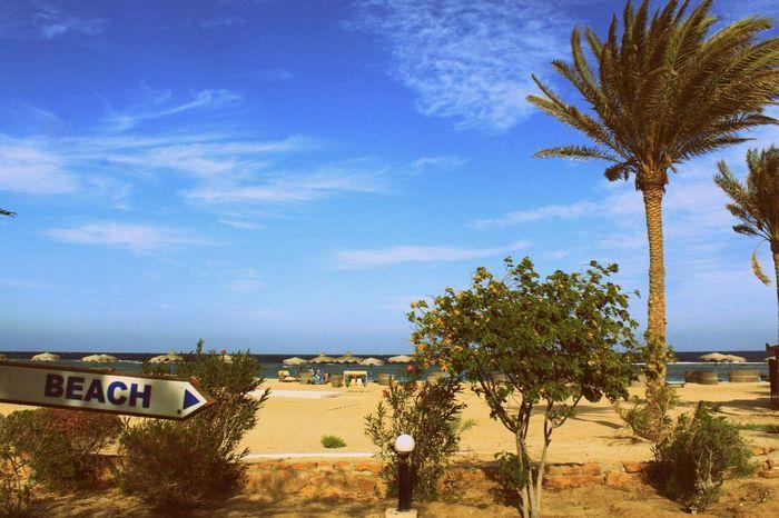 Beach Lovely City Sammer Sky Street Лето2015 Blue Sea Alone... Walking Wonderful Marsa Alam Morning Sanny Egipt Streetphotography Woter Green Green Green Green!