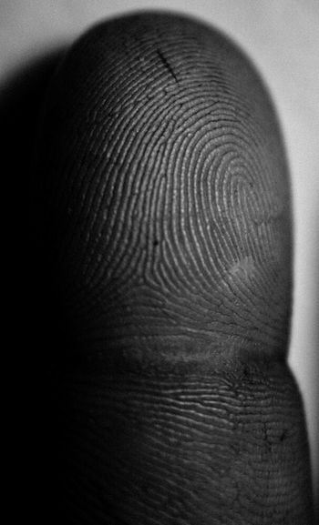 Textures And Surfaces Finger Finger Print