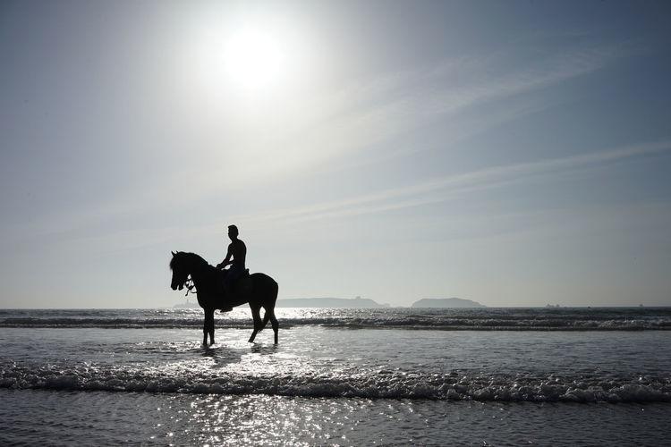 Horse riding horses on beach