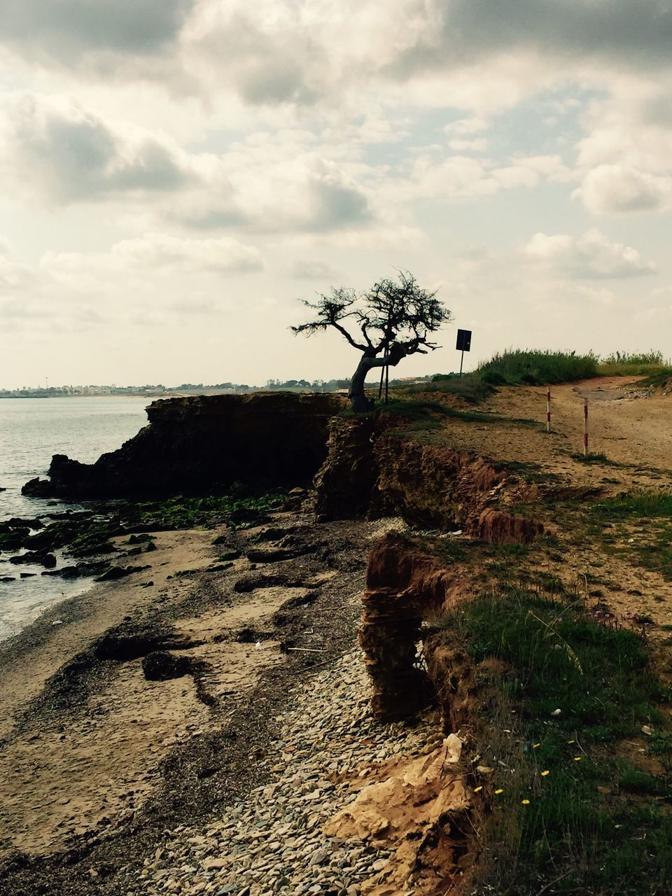 sky, tranquility, tree, cloud - sky, tranquil scene, nature, landscape, scenics, rock - object, outdoors, no people, day, lone, beauty in nature, sea, water