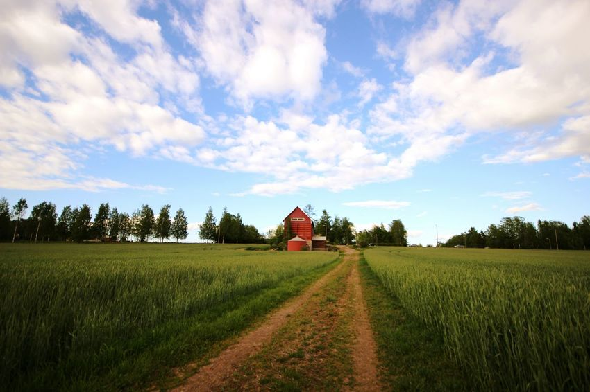Agriculture Field Farm Barn Landscape Outdoors Nature Live For The Story