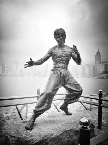 Kung Fu Fighting Z Goes Hongkong