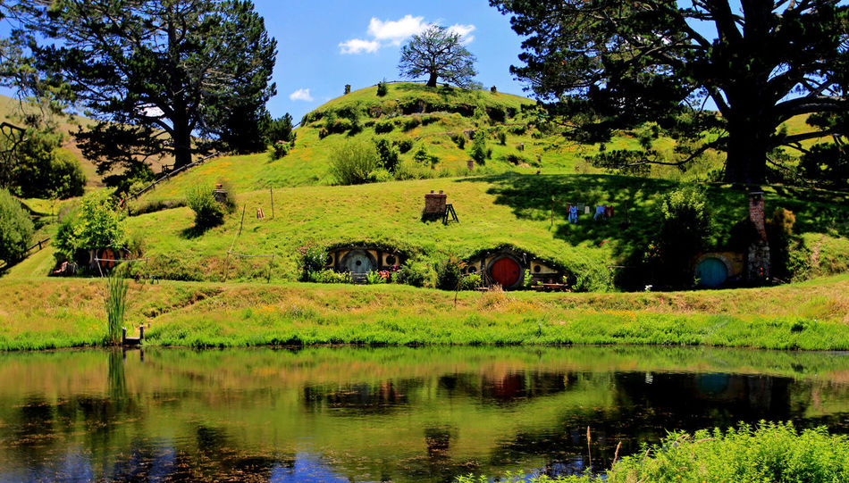 Auenland Green Scenery Hobbit Hobbit House Hobbiton Hobbiton Movie Set Tours Landscape Matamata Neuseeland New Zealand New Zealand Landscape New Zealand Scenery