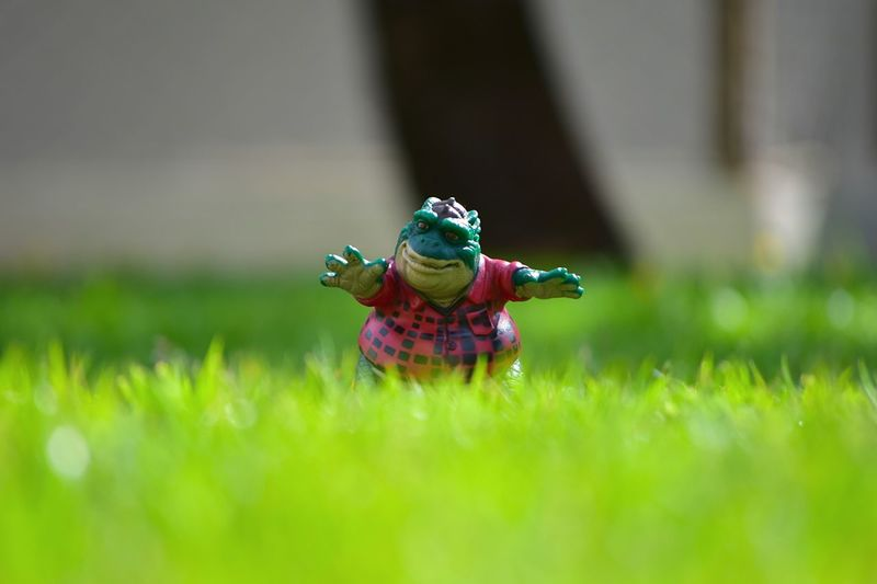 Close-up of toy on grass in field