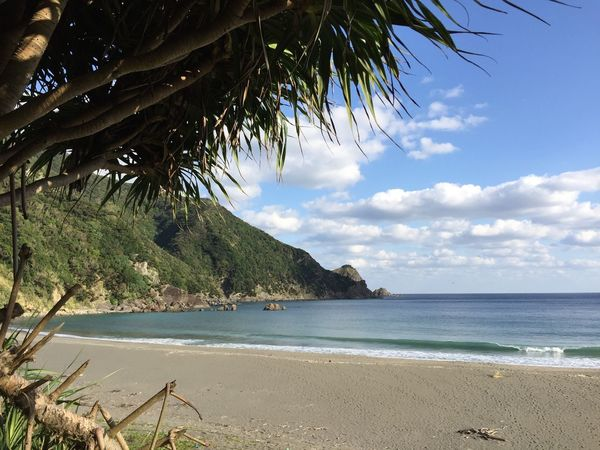 Sea Beach Horizon Over Water Scenics Nature Beauty In Nature Water Sky Tranquil Scene Tropical Climate Tranquility Tree Idyllic Outdoors Palm Tree Vacations No People Cloud - Sky Sand Day in Amami Island Kagoshima Japan