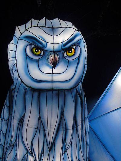 Close-up of animal representation