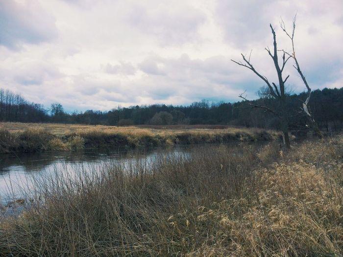 Rzeka River Drwęca