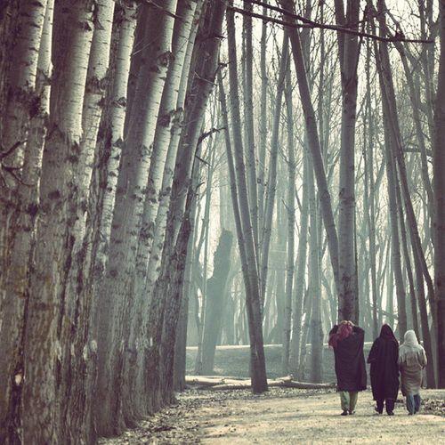 Women Popular Phiran Sopore Noorgah Eidgah Winter ChilaEkalan Revo Revoshots Revoshotsphotography IAmKashmir IExploreKashmir IExplore Kashmir Freedom