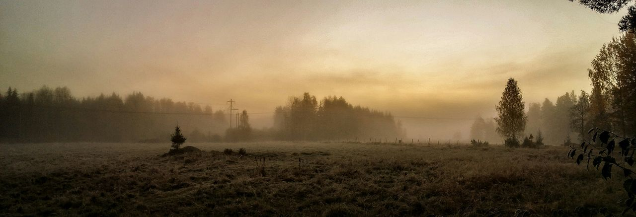 Wonderful and beautiful morning today. (Edited). Eyem Best Shots Nature EyeEm Gallery Open Edit Sweden Landscape Foggy Fog World Panorama
