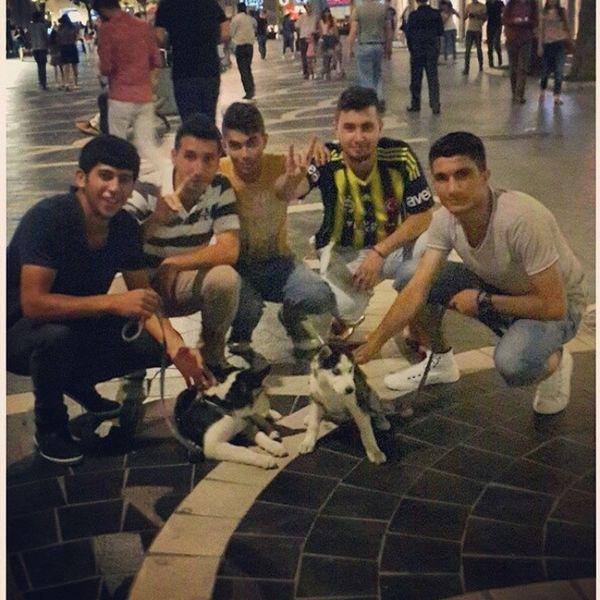 Today Torqovı Xaski Boz qurd our nice photo! :) ?????