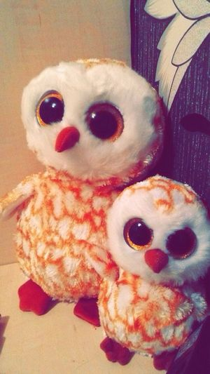Hamlets Mrs Swoops Little Swoops Owls Fluffy Cuddly Love