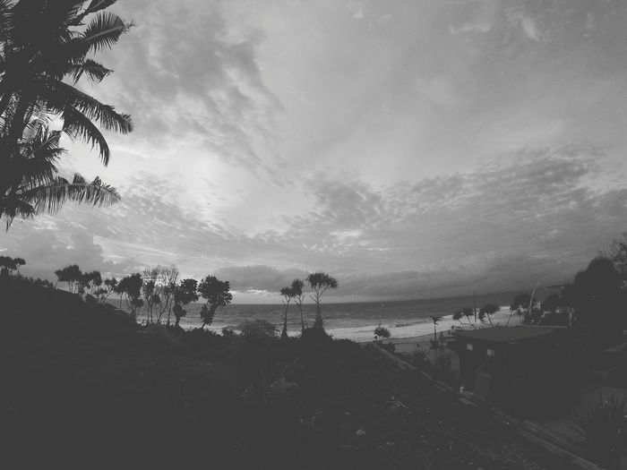 EyeEmNewHere Bali Indonesia Tree Outdoors No People Beach Sky Nature Blackandwhite Tranquility Landscape Sea Day Beauty In Nature Water