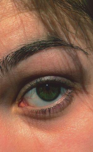 My eye. Real eyes recognize real lies. Eyes Eye Green Looking Eyebrow Look Me In The Eyes Vision Fantasy Tired Eyes  Amazing People Human Eye Eyelash Eyesight Eyeball
