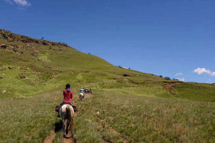Rear view of people riding horse on field against sky
