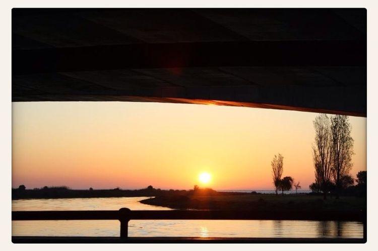 Saudades Do Sol...