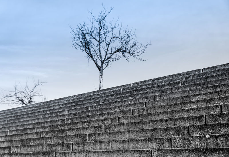 cold and empty ... Ancient Civilization Architecture ArtWork Berlin Building Exterior Built Structure Bäume Cold Composition Kalt Leading Low Angle View No People Outdoors Perspective Prenzlauerberg Residential Structure Rural Scene Sky Stairs Steps Surreal Tree Treppe Winter