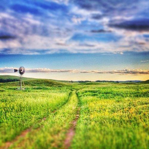 Re-edit for today's forum. (lo-fi) took this HDR on my grandparents ranch in Nebraska. #jj_forum_0364 #road #sandhills Green Windmill Road Photowall Instagramhub Sandhills Altexpo Jj_forum_0364