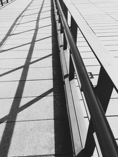 Dresden Hygienemuseum Streetphoto_bw Geometryurban City