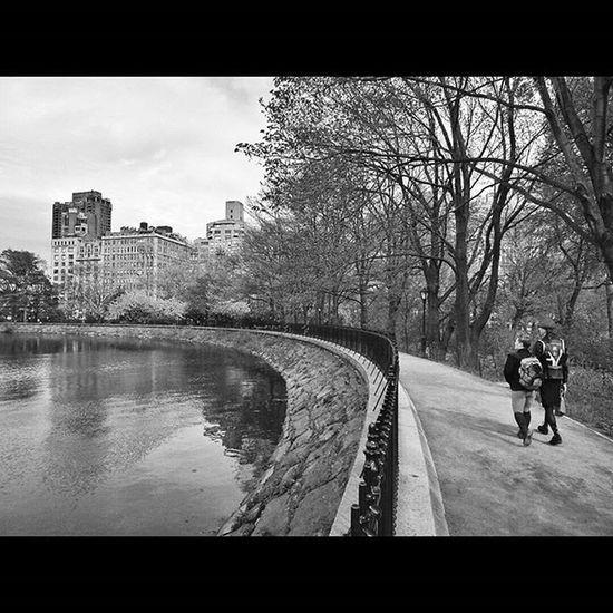 Jacqueline Kennedy Onassis Reservoir in Central Park. : : Centralparkreservoir CentralPark NYC Newyork Newyorkcity Newyorkcitythroughmyeyes Streetshooter Streetphotography Streetphoto Documentaryphoto Documentaryphotography Urbanexploration Urbanhike Streetscape Nystreetphotography Urbanlandscape Bw_curators Blackandwhite Blackandwhitephotography Bwphotography Bandwphotography Shootermag Yetmagazine Subjectivelyobjective Fotoguerrilla way2ill artofvisuals picoftheday PhotoOfTheDay artoftheday