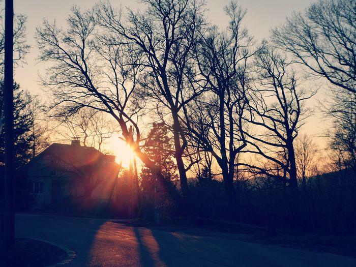 wonderful mood Sundown, Nightfall, Close Of Day, Twilight, Dusk, Evening Sundown...♥ Springtime💛 Mood Captures For My Friends😚 Sundown Near The Forest Tree Sunset Sunlight Silhouette Bare Tree Shadow Sun Sunbeam Sky