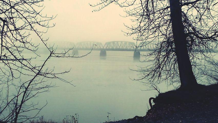 Train Bridge Foggy Morning Foggy Bridge Riverside Nature Stroll Through Nature Train Bridges