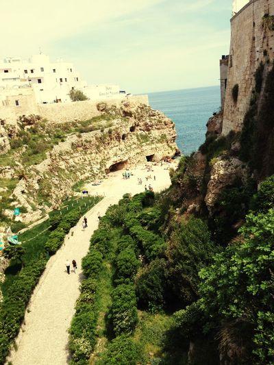 Sapore di sale .... Sapore di mare 😍 Sea Summer Estate Taking Photos Trees Mare ❤ Gita Albero Beautiful Place
