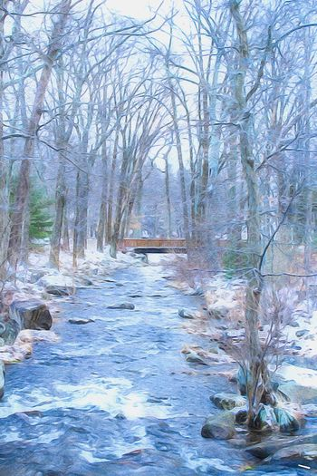 Beauty In Nature Outdoors Winter Trees Stream Rocks And Water Motion Paint Edit