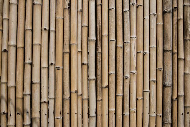 Abundance Architecture Backgrounds Bamboo Bamboo - Material Bamboo - Plant Brown Built Structure Close-up Day Design Full Frame In A Row Large Group Of Objects No People Outdoors Pattern Repetition Side By Side Textured  Wood - Material
