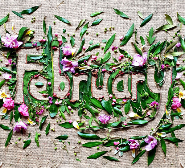 High angle view of february text made with flowers and leaves on fabric