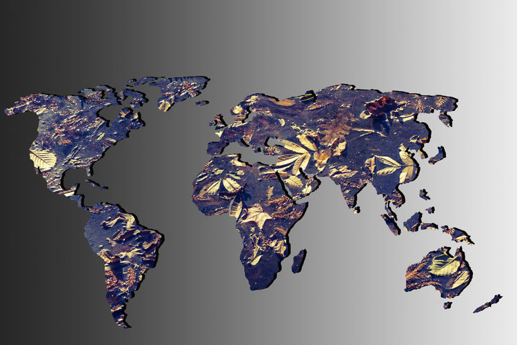 America Africa ASIA Atlas Australia Autumn Background Business Color Colorful Concept Continents Country Earth Environment Europe Fall Flora Global Globe Gray Habitat Hemisphere Infographic Information Leaf Leaves Map Natural Nature Navigation Ocean Planet Plant Transportation Travel Tree Universe World World Map Worldwide