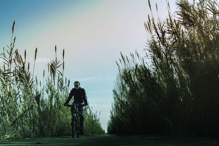 Naturelovers Nature Photography Nature Bycicle Discover Your City Silhouette I Love My City