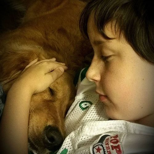 A boy and his dog MyBoy Myson Rescuedog Luckyyouanimalrescue Straydogrescue Goldenretrievers Goldenretrieverrescue RescueAnimals Adopt AdoptDontShop Ilovemyrescue Family 4leggedchild Aboyandhisdog Love UnconditionalLove Rescuedogsofinstagram Savealife