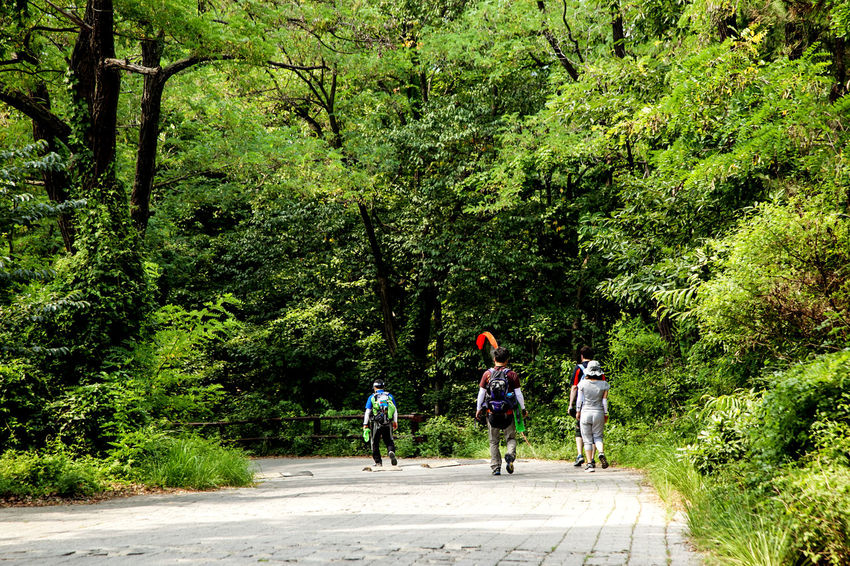 Alone Bicycle Bukhansan Cycling Escapism Full Length Getting Away From It All Leisure Activity Lifestyles Men Real People Rear View Riding Side View Street The Way Forward Togetherness Tracking Trail Transportation Walking Walking Around Women