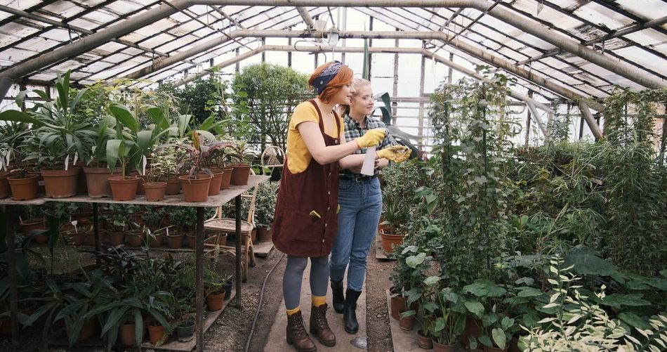 Women watering plants in greenhouse