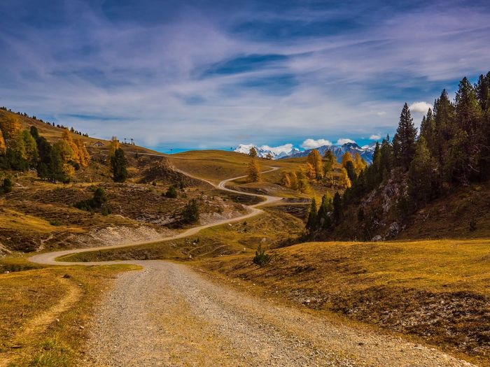 Golden autumn Val Müstair Autumn Sky Cloud - Sky Nature Tree Plant Beauty In Nature Environment Tranquil Scene No People Non-urban Scene Tranquility Coniferous Tree Day Sunlight Mountain Scenics - Nature Outdoors Land Travel Landscape