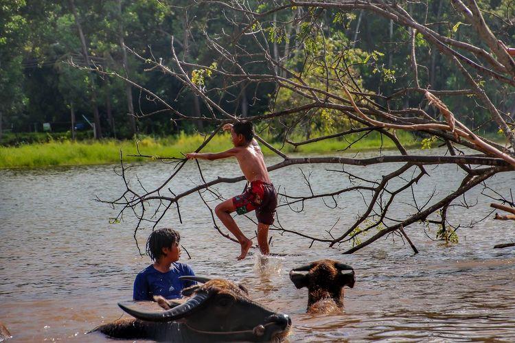 Full length of men in lake against trees
