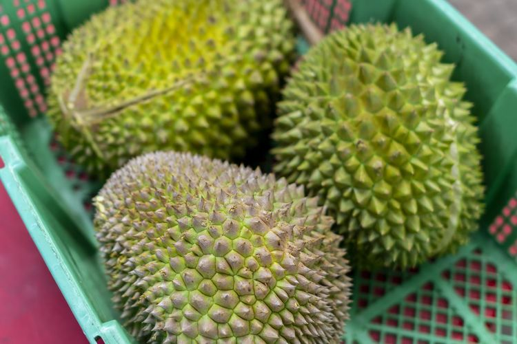 Durians Green Color Close-up No People Freshness Growth Focus On Foreground Indoors  Still Life Sharp Food And Drink High Angle View Fruit Spiked Tropical Fruit Day Food Healthy Eating Durian