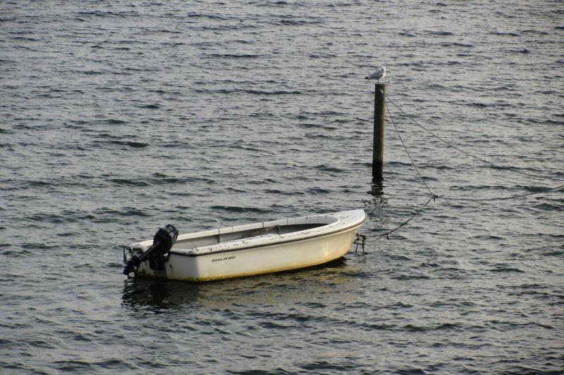 Dänemark Dänemark Am Meer Und Boot