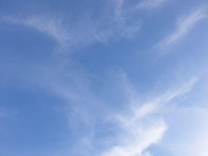 Backgrounds Blue Sky Only Sky Cloud - Sky