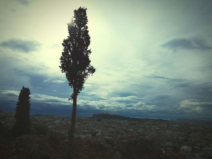 TreeSilhouette Acropolis View Rainy Days☔ Winter Is Coming Strefi Hill Tranquility Sky No People Outdoors