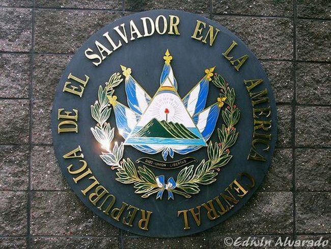 EL SALVADOR 503