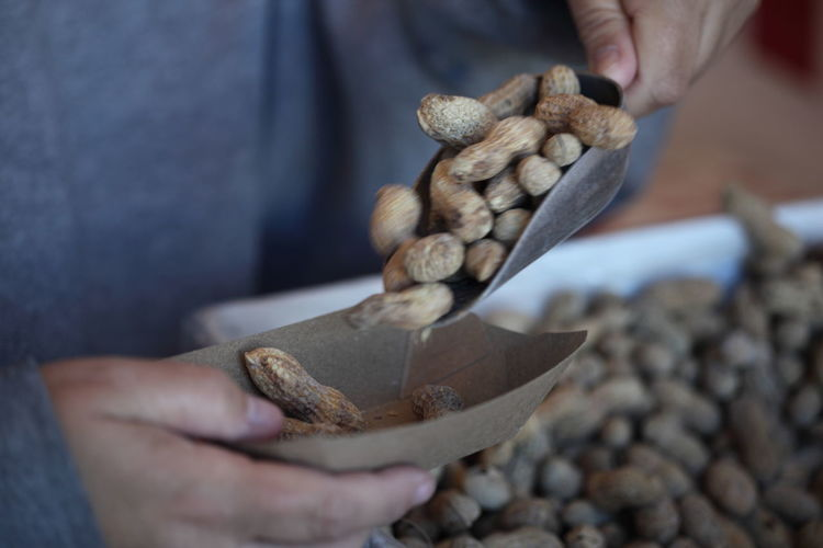 Cropped image of person holding scoop with peanuts